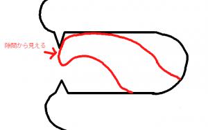 英語のLは上の歯に舌の真ん中を押し付けて発音する